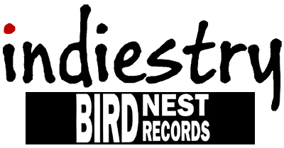 Birdnest records